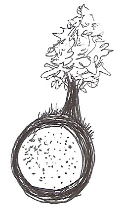 Logo abeto. RdM